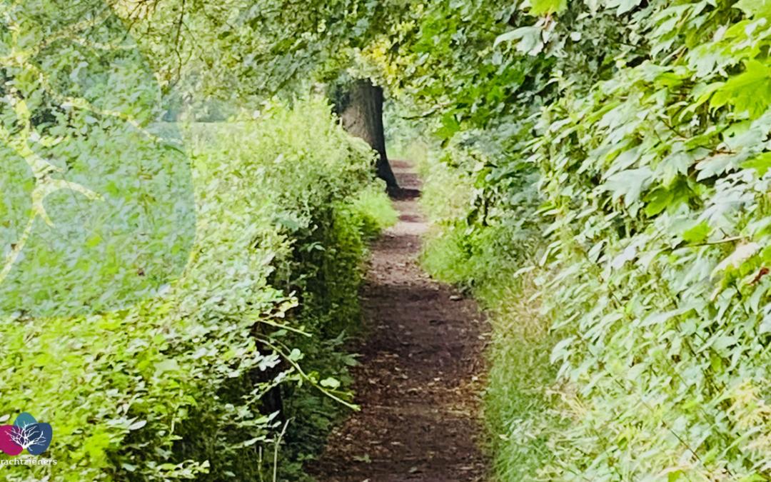 Ieder mens heeft zijn eigen pad; roeping